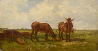 Ferdinand BONHEUR (1817-1887)