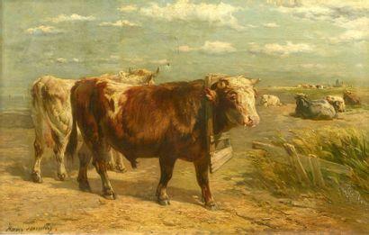 Henri SCHOUTEN (1864-1927)