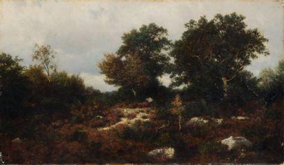 Théodore ROUSSEAU (1812-1867)