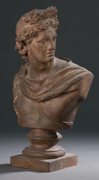 Buste d'Apollon Terre cuite patinée, reposant...