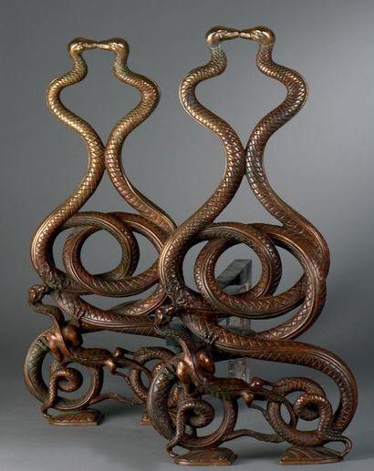 Paire de chenets aux serpents, représentant...