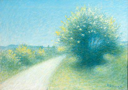 Achille LAUGÉ (1861-1944)  Route de Cailhau,...