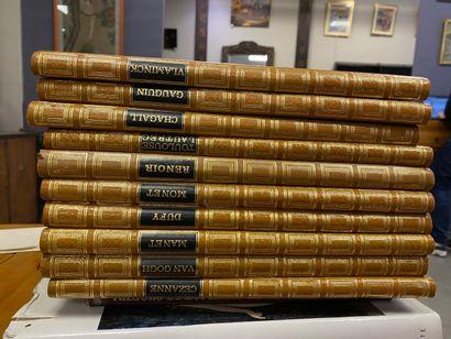 Lot de livres sur les Beaux-Arts, Tapis d'Orient, Merveilles du Louvre, Trésors de la Peinture Espagnole, Grands Peintres collection Flammarion, 16 volumes, Intérieurs Rustiques, et d'autres divers