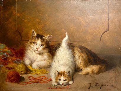 Jules Gustave LE ROY (1856-1921).  Deux chats...
