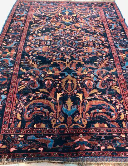 Tapis Iranien Farhan  258x170cm