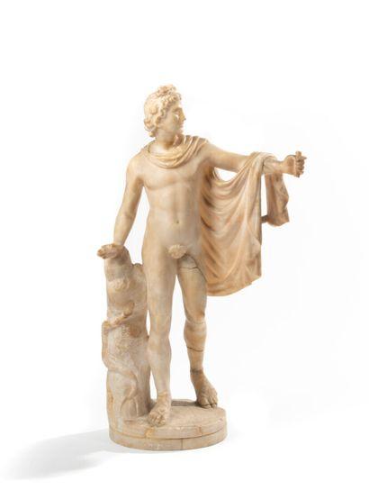 Apollon du Belvedere Marbre XIXème siècle...
