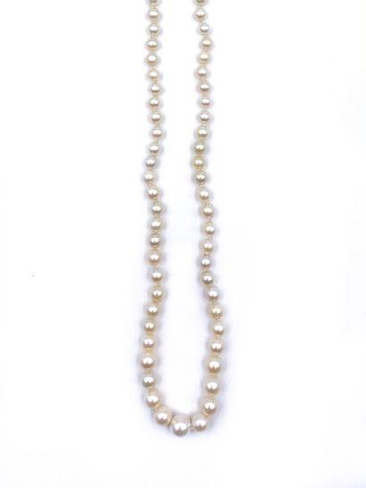 COLLIER de perles de culture blanches, en...