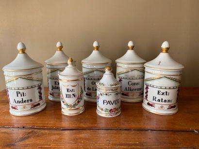 Lot de 7 pots à pharmacie en porcelaine de...