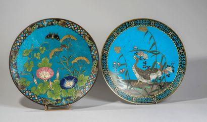 JAPON - XXe siècle - Paire de plate en émaux...