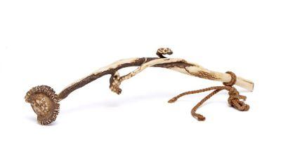 Bâton nyoi (Chinois: ruyi) en ivoire sculptée...