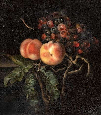Willem Frederik VAN ROYEN (Harrlem 1645 - Berlin 1723) Nature morte de pêches et...