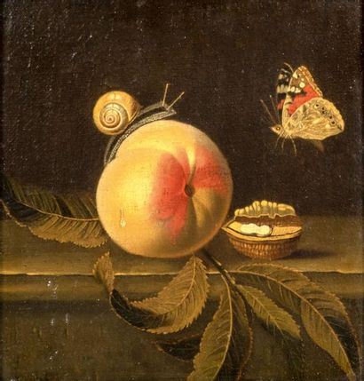 Attribué à Adriaen COORTE (Middelbourg 1665 - 1707)