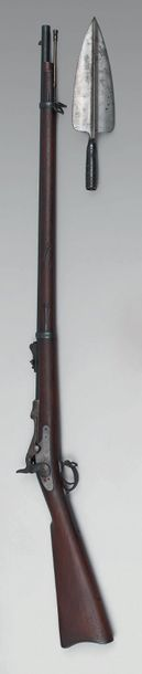 Fusil Springfield modèle 1873 (Trapdoor),...