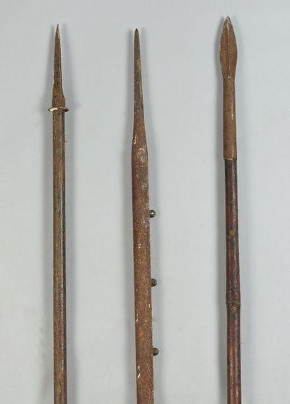 Trois lances de cavalerie, deux avec hampe...