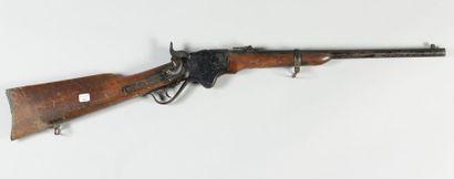 Carabine Spencer modèle 1865, canon de 20