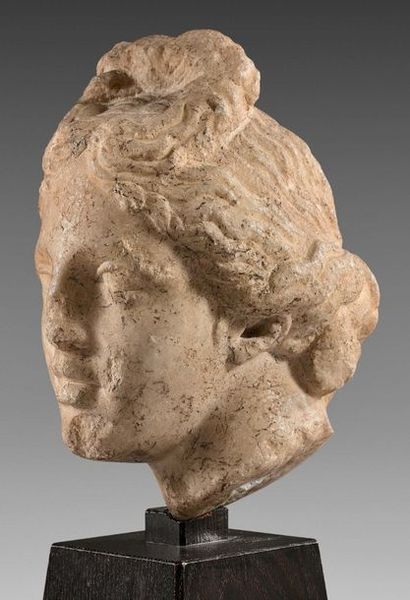 Aphrodite's head topped with a top bun and thick wavy strands gathered behind the...