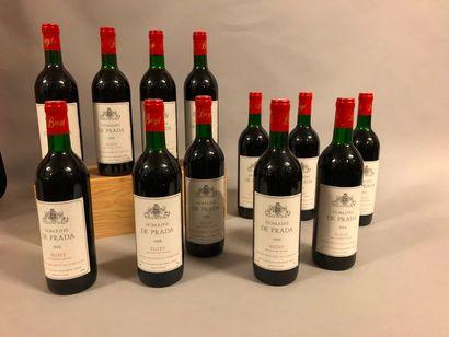 12 bouteilles BUZET Domaine de Prada 1988 (1 BLT)