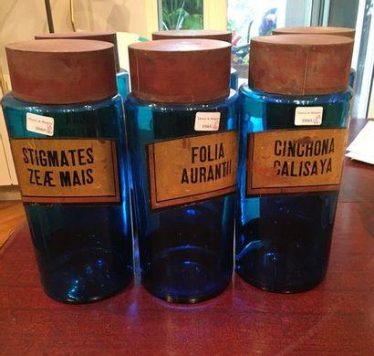 Ensemble de pot de pharmacie en verre bleu...
