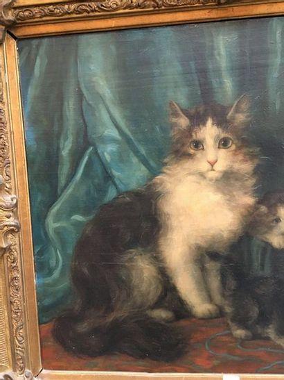Les chats  Huile sur toile 54 x 65 cm  Accidents