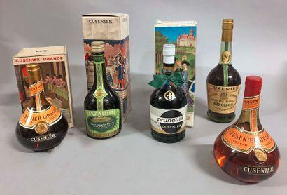5 bouteilles DIGESTIF (Mazarine, prunelia,...