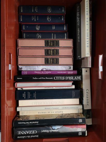 Une caisse de livres d'art et divers : Prévert,...