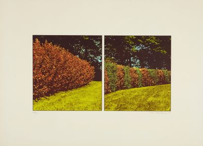 Ivor ABRAHAMS (1935-2015)  The Gardens :...