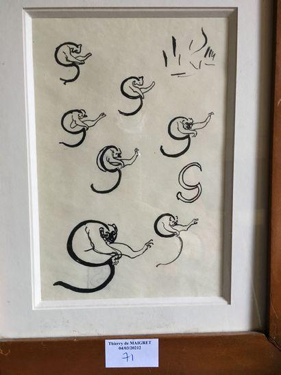 Lettres zoographiques**Encre sur papier**23...