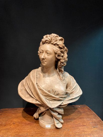 Bust in patinated plaster, after COUSTOU...