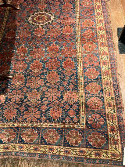 PERSE Carpet blue background(wear) 265 x...