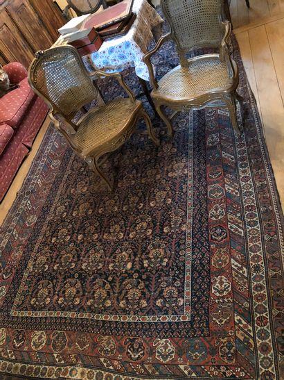 Big carpet Bukhara blue background 4m60...