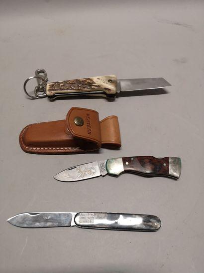Trois couteaux pliants dont WESTERN dans...
