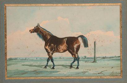 Jonny AUDY (act.1850-1880). Pur-sang au pré....