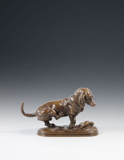 Edouard Paul DELABRIERRE (1829 - 1912). Basset hound se grattant. Bronze à patine...