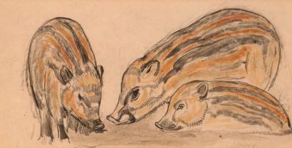 Paul JOUVE (1878-1973). Marcassins. Crayon...