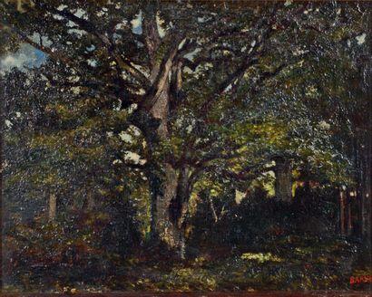 Antoine Louis Barye (1796-1875) Sous bois Huile sur papier marouflé sur toile, porte...