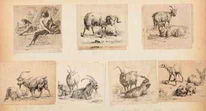 Nicolas BERGHEM (1620-1683)  Moutons, chèvres...