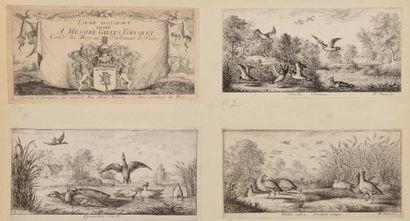 Albert FLAMEN (1620-1692)  Livre d'Oyseaux...