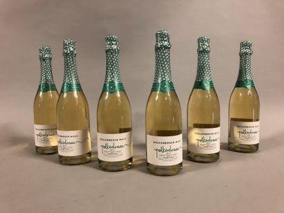 6 bouteilles VIN PÉTILLANT STELLENBOSCH HILLS,...