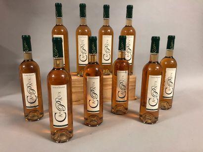 10 bouteilles CÔTES DE PROVENCE