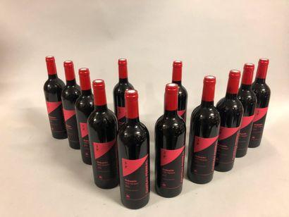 12 bouteilles VENTOUX