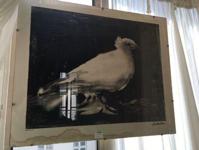 D'après PICASSO-La Colombe-Lithographie d'après...