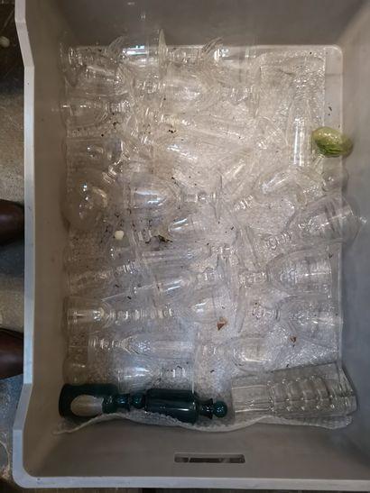 Deux mannettes de parties de service de verres, pots à pharmacie en verre, coupe...