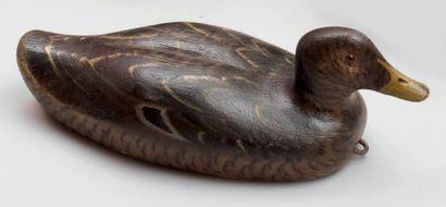 Canard appelant en bois peint. Provenance:...