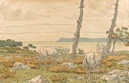 ECOLES BRETONNES des XIXème et XXème siècles Henri RIVIERE (1864-1951)