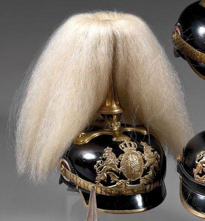 Casque bavarois d'officier de chevau-légers...