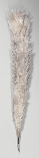 Grand plumet en plumes blanches; longueur...