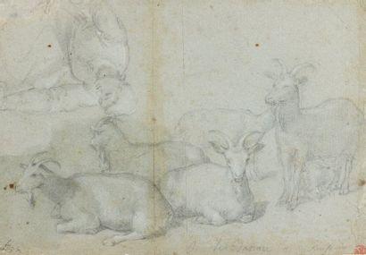 Jacopo BASSANO (1510 - 1592) Attribué à Etude pour un berger et un troupeau de chèvres...