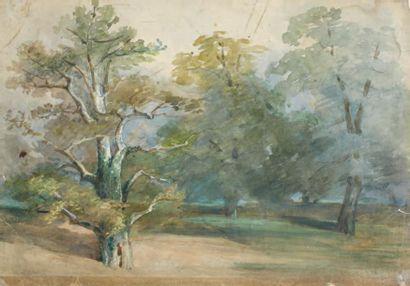 Alexandre - Marie COLIN (Paris 1798 - 1873)