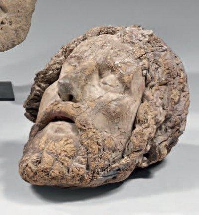 Grande tête de Christ en bois sculpté. Trace...