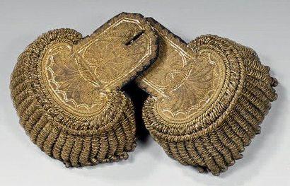 Belle paire d'épaulettes de colonel de la...